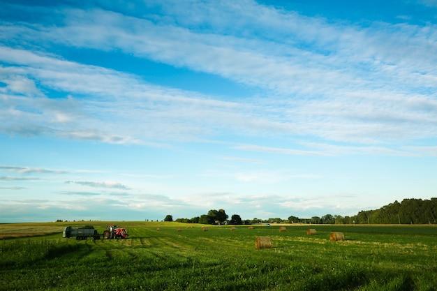 Coltivatore in trattore rosso che lavora al campo di fieno
