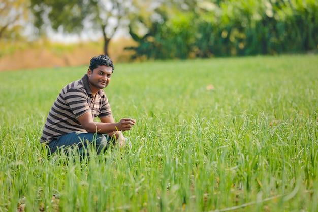 Coltivatore indiano al campo di cipolle