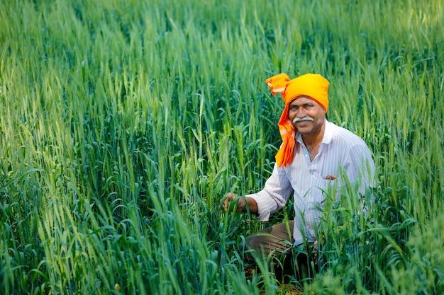Coltivatore indiano al giacimento di grano dorato
