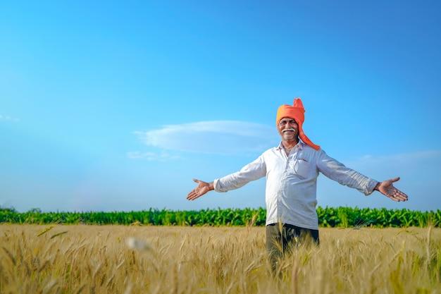 Coltivatore indiano felice che cammina e che spande le sue armi nel suo campo di frumento.