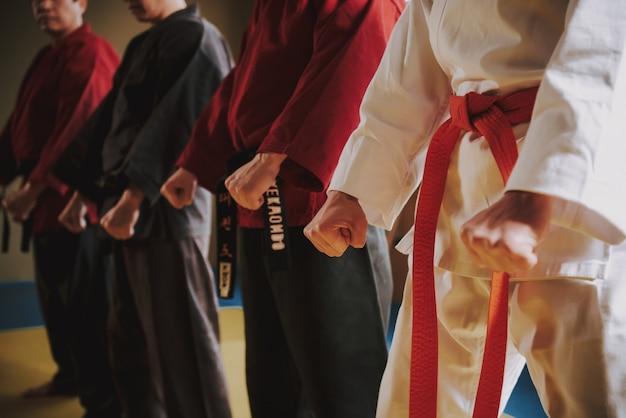 Combattenti di arti marziali in diversi colori keikogi che fanno le posizioni insieme