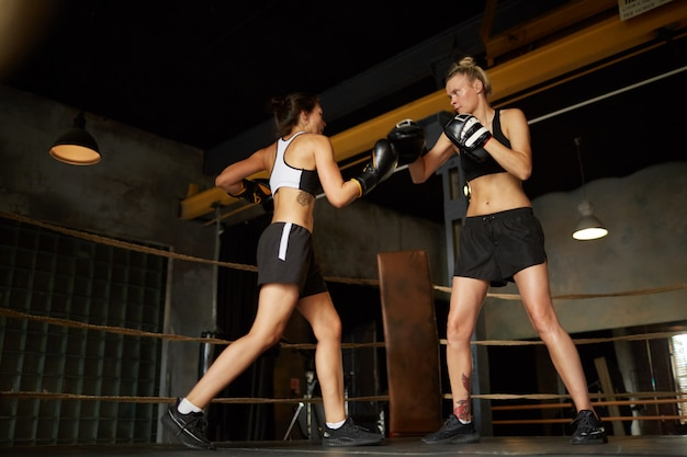 Combattimento di due pugili femminili