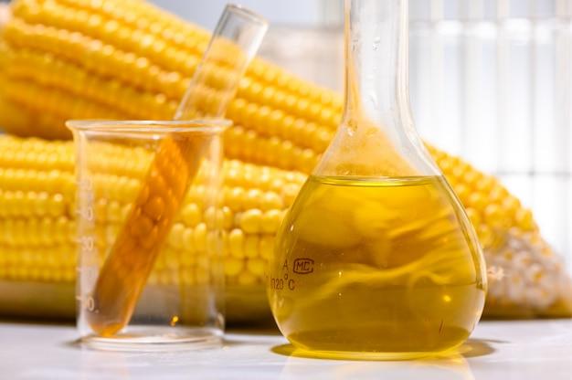 Combustibile biologico o sciroppo di mais, benzina, energia, ambientalista