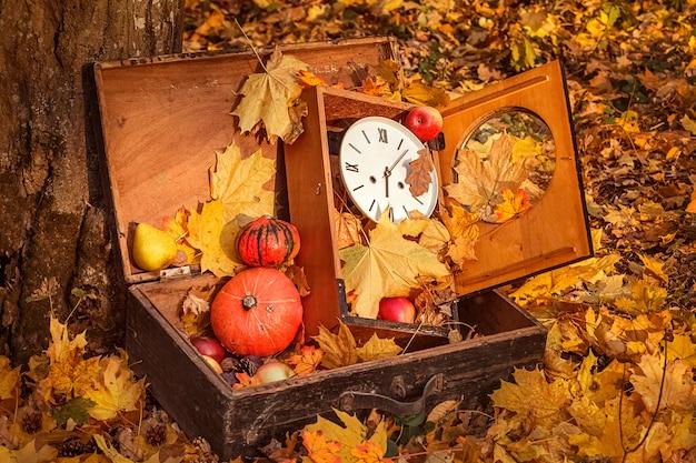 Composizione all'aperto in autunno con zucche