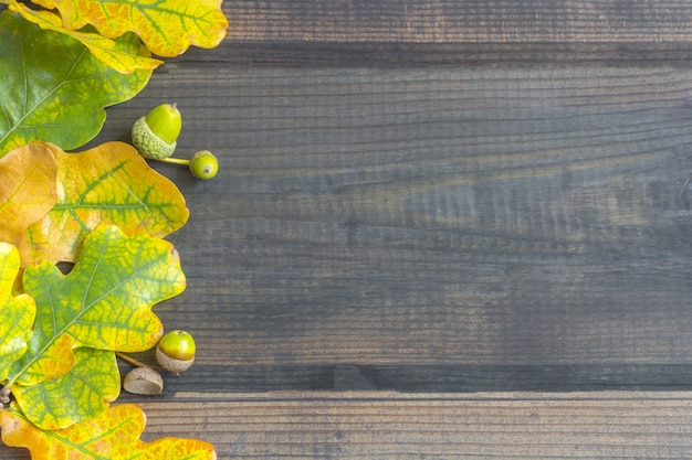 Composizione autunnale. confine cornice di foglie colorate d'autunnali