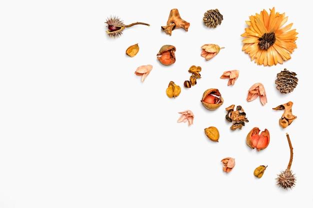 Composizione autunnale da foglia secca, bacche, fiori