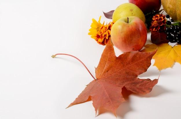 Composizione autunnale di frutta e verdura, foglie, mele, pere su uno sfondo bianco.