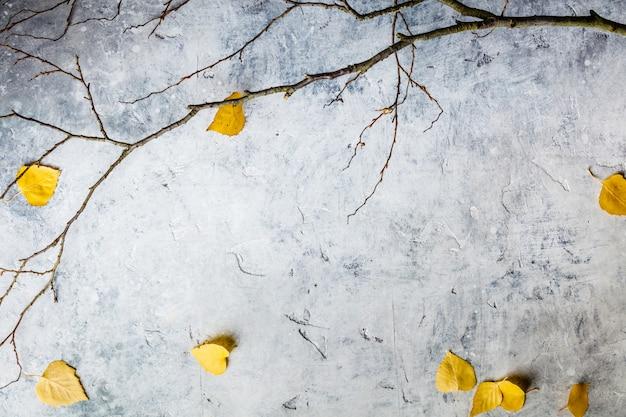 Composizione autunnale fatta di foglie e rami secchi.