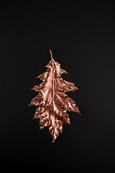Composizione autunnale. foglie di acero dorate sul nero.