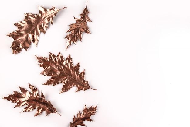 Composizione autunnale. foglie di quercia dorata su bianco.