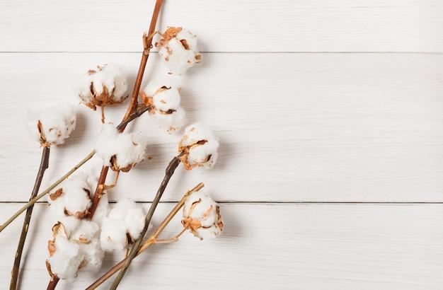Composizione autunnale. vista superiore del fiore di cotone lanuginoso bianco secco su legno bianco. composizione floreale
