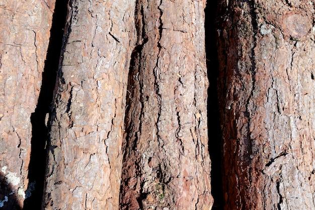 Composizione con il mucchio dei tronchi di legno in primo piano
