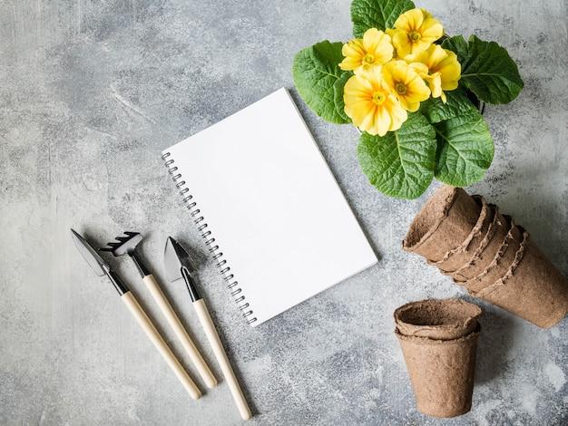 Composizione da giardino piatta con fiori primaverili - giacinti, primula, semi in confezione e attrezzi da giardino