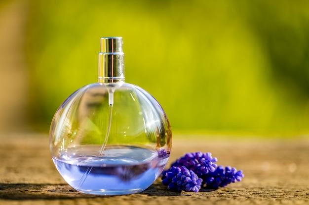 Composizione della bottiglia e dei fiori di profumo blu sul fondo di colore