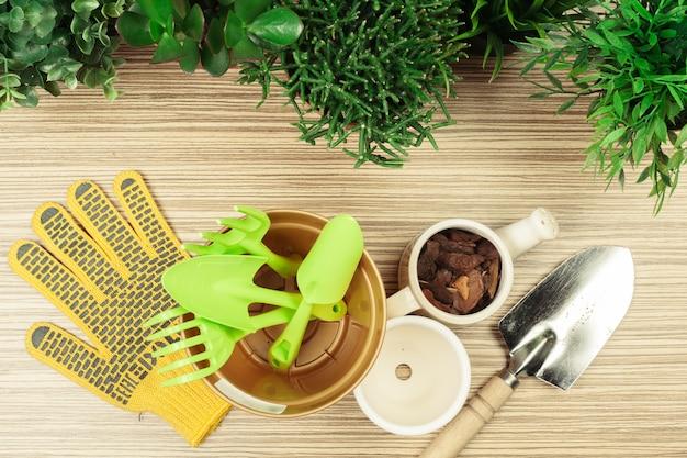Composizione di attrezzi da giardino e piante