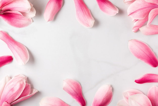 Composizione di fiori. cornice fatta di fiori di magnolia rosa. disteso. concetto di primavera