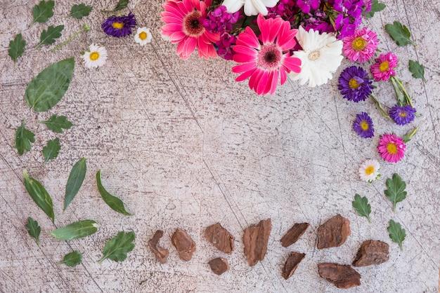 Composizione di fiori, corteccia e foglie