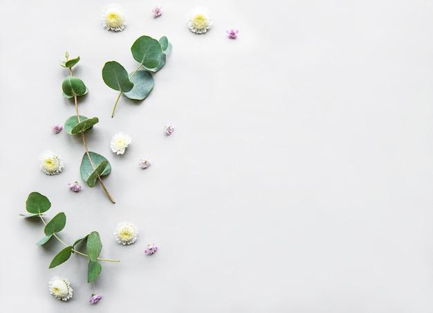 Composizione di fiori su sfondo bianco