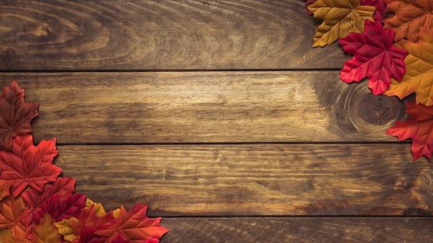 Composizione di foglie colorate in angoli