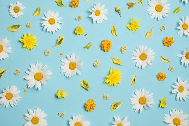 Composizione di meravigliose fioriture colorate