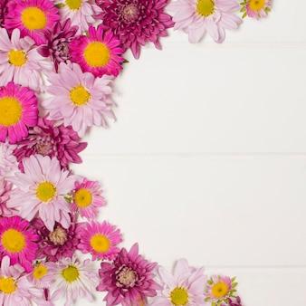 Composizione di meravigliose fioriture rosa