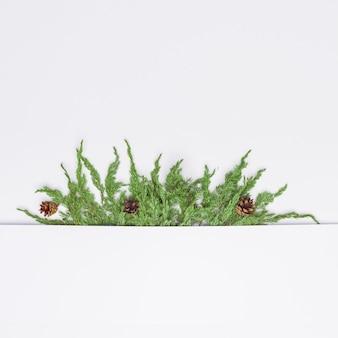 Composizione di natale di rami di conifere. disteso. vista dall'alto natura capodanno concetto. copia spazio.