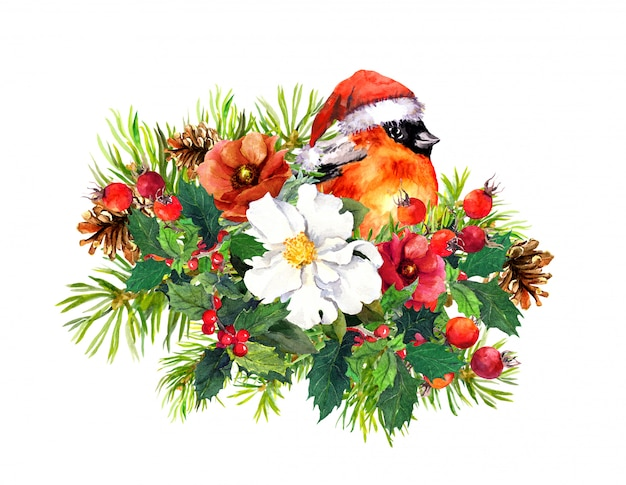 Composizione di natale - fringuello, fiori d'inverno, abete, vischio. acquerello