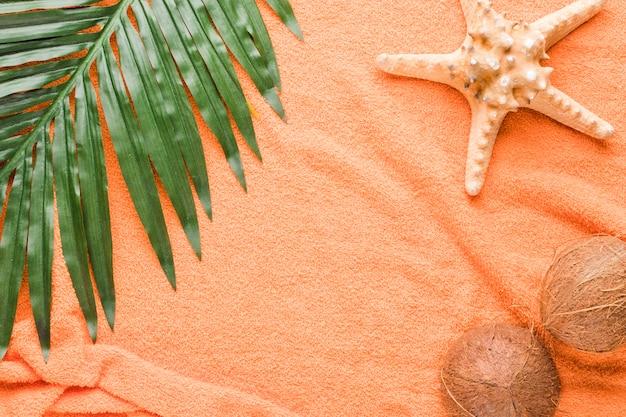 Composizione di noci di cocco e foglie di stelle marine