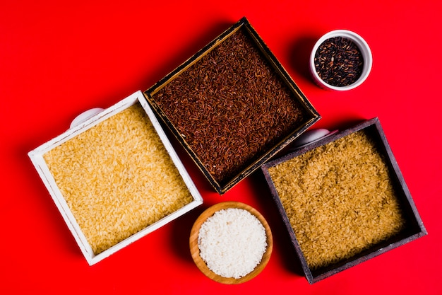 Composizione di riso piatto laico