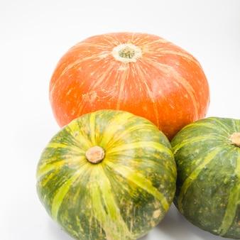 Composizione di zucche verdi e arancioni
