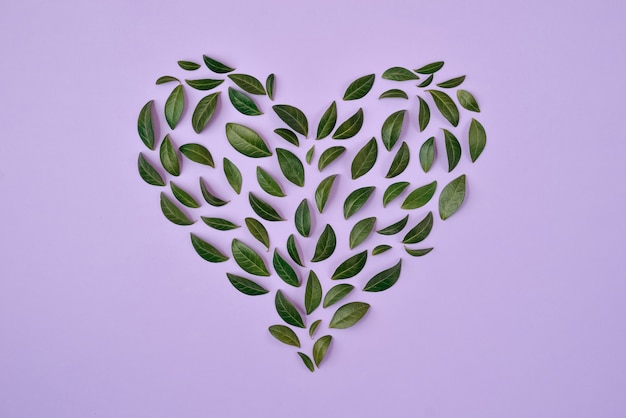 Composizione estiva le foglie verdi hanno sistemato nella forma del cuore sopra fondo blu.