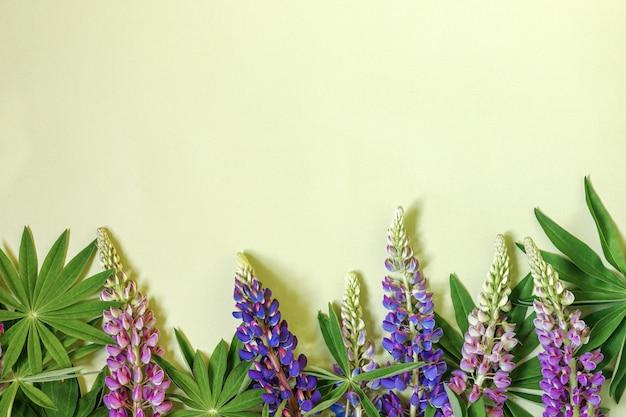 Composizione floreale design piatto in primavera composta da fiori di lupino blu e foglie verdi su un verde chiaro