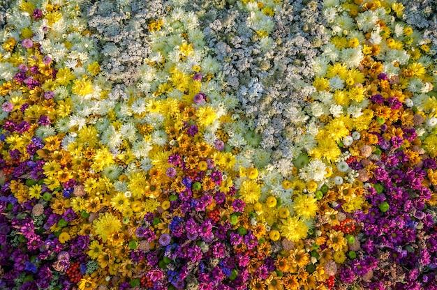 Composizione floreale di crisantemo giallo, bianco e fucsia