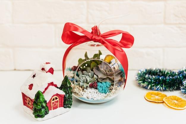 Composizione floreale di piante grasse, pietra, sabbia e vetro, elemento di interni, decorazioni per la casa, natale,
