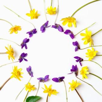 Composizione floreale fiori gialli e viola su sfondo bianco. vista piana, vista dall'alto, copia spazio.