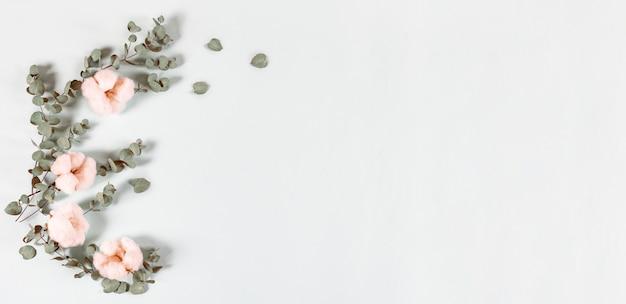 Composizione nei fiori - foglie fresche dell'eucalyptus e fiori del cotone su fondo leggero, insegna.