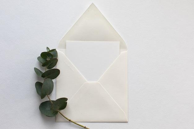 Composizione piatta laica con una busta bianca, carta bianca e un rametto di eucalipto su uno sfondo di carta bianca.