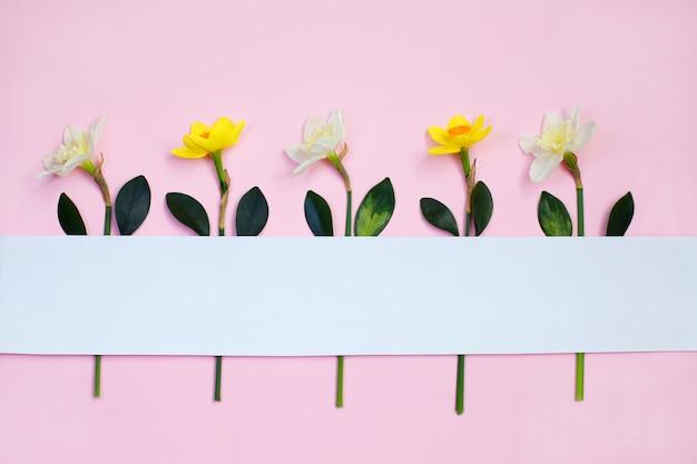 Composizione primaverile realizzata con fiori di narciso