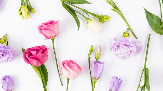 Composizione vibrante di fiori e foglie