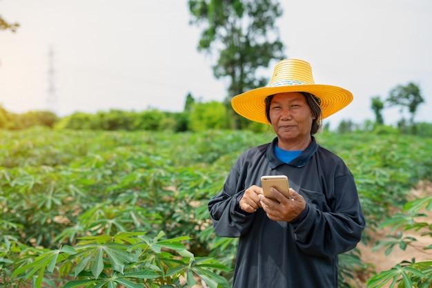 Compressa astuta della tenuta della lavoratrice agricola che sta nel giacimento della manioca per il controllo del suo giacimento della manioca. agricoltura e concetto di successo del coltivatore intelligente