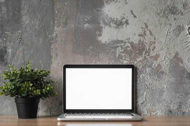 Computer portatile con schermo bianco vuoto e pianta in vaso di fronte al vecchio muro