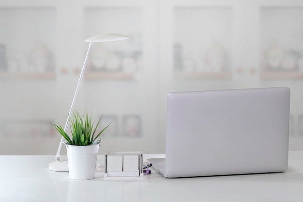 Computer portatile del modello con la lampada e la pianta da appartamento sulla tavola superiore bianca nella stanza moderna.