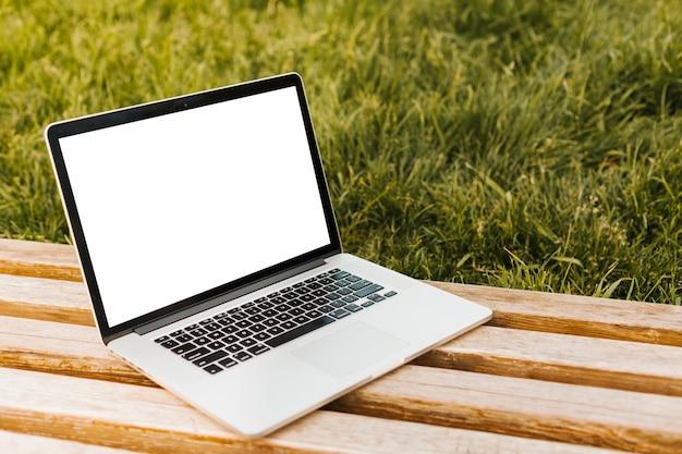 Computer portatile nel modello del parco