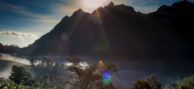 Concetto ambientale della natura del parco di ecologia del pascolo della montagna