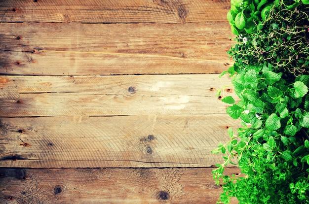 Concetto astratto di primavera o estate. erbe biologiche (melissa, menta, timo, basilico, prezzemolo)
