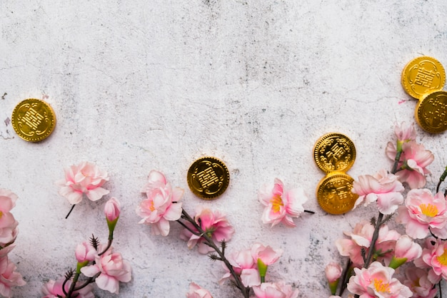 Concetto cinese di nuovo anno con copyspace