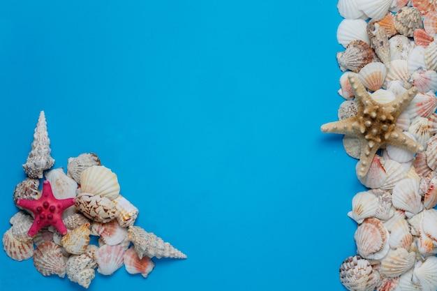 Concetto creativo laico piatto di vacanze estive. vista dall'alto di conchiglie e stelle marine su sfondo blu turchese
