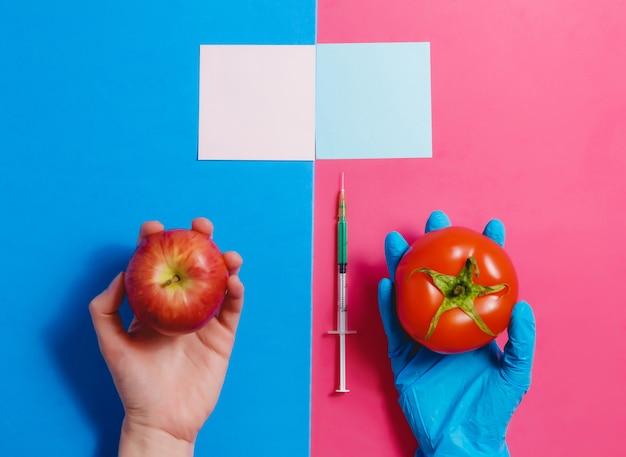 Concetto dell'alimento geneticamente modificato su fondo rosa e blu