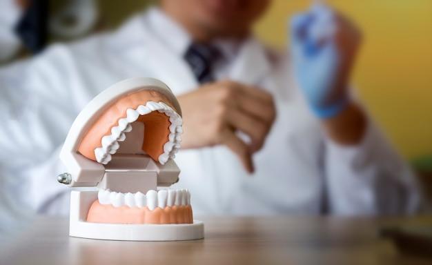 Concetto dentale; modello di denti umani dentali con sfondo sfocato