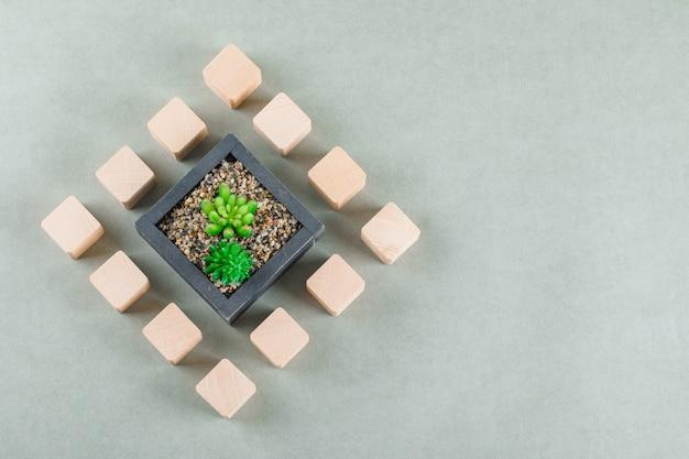 Concetto di affari con blocchi di legno, pianta verde.